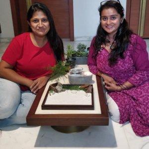buy-online-decorative-plants-live-arts-creosora-infinite-creativity-38