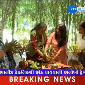 Zee TV 24 Kalak covered Indoor plantation Workshop